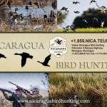 Why Choose Nicaragua For Duck and Dove Hunting