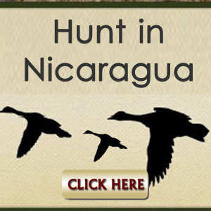 Hunt In NIcaragua Click Here