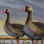2015 Louisiana Duck Stamp Contest